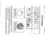 Elements of Art - Line Worksheet