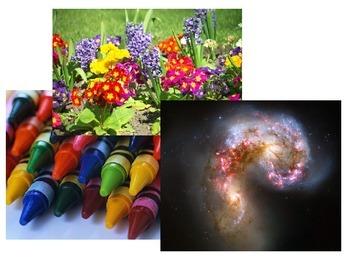 Elements of Art Quiz 1 (PowerPoint Presentation)