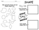 Elements of Art - Shape Worksheet - Editable