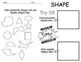 Elements of Art - Shape Worksheet - Editable