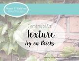 Elements of Art: Texture- Ivy on Bricks (Real Photos)