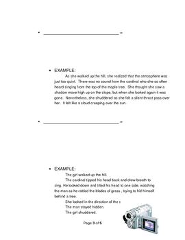 Elements of Fiction: Point of View Guided Notes Sheet Advanced