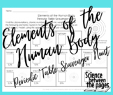 Elements of the Human Body Periodic Table Scavenger Hunt