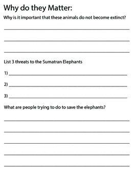 Elephant Biome Project