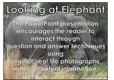 Elephant - Interactive PowerPoint presentation