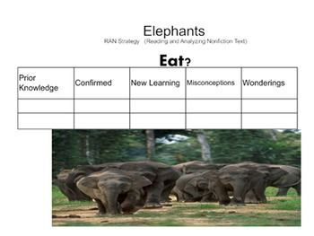 Elephant RAN (Reading and Analyzing Nonfiction)Smartboard Activity