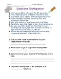 elephant toothpaste teaching resources teachers pay teachers. Black Bedroom Furniture Sets. Home Design Ideas