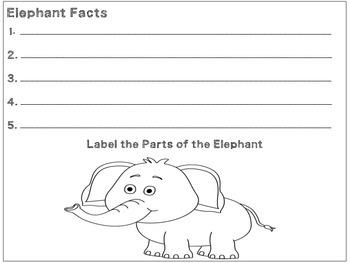 Elephant Worksheet non-fiction