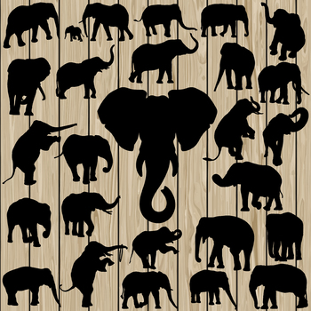 26 Elephant silhouette Vector, SVG, DXF, PNG, EPS, Animal, Jungle, Cut File