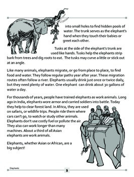 Elephants: Asian or African?