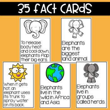 Elephants: Fact and Opinion