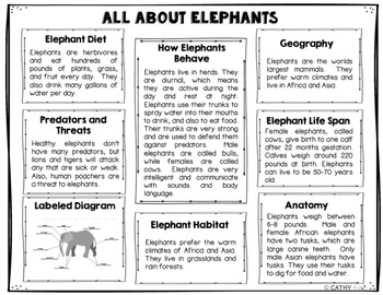 Elephants Foldable Brochure Research Project, Using Informational Text,  Vocab