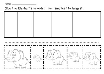 Elephants - From Smallest to Largest