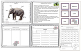 Elephants Mini Unit: Nonfiction mini book, fact sheet, games, worksheets
