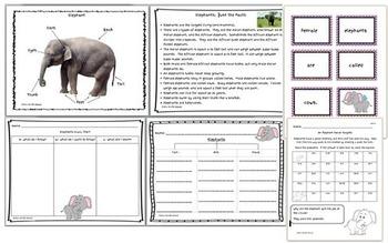Elephants Mini Unit: Nonfiction mini book, fact sheet, games, worksheets