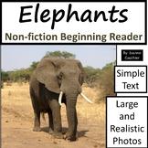Elephants: Non-fiction animal e-book for beginning readers