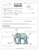 Elephants Adaptation Webquest Reading Research Activity Common Core