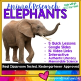 Elephants . 5 days of awesome research mixed w/ literacy skills, videos, & FUN!