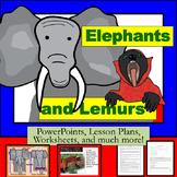 Elephants and Lemurs... Oh My!