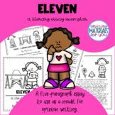 Literary Essay Exemplar | Eleven