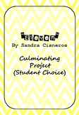 Eleven, by Sandra Cisneros: Culminating Project (Student Choice)