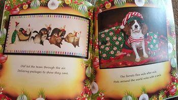 Elf Olaf, Santa's Magical Gift (Children's book)