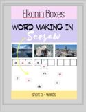 Elkonin Boxes, Short o , Digital Word Making - Phoneme Seg