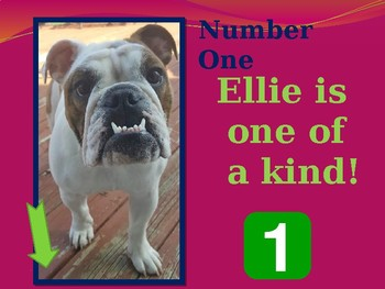 Ellie the Counting Queen!  A Powerpoint Number Book for Primary Readers