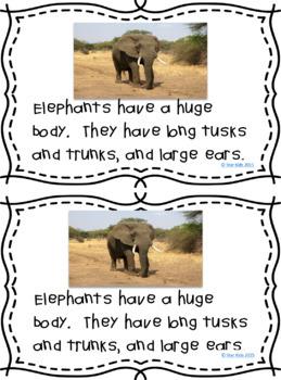 Riding The Elephant PDF Free Download
