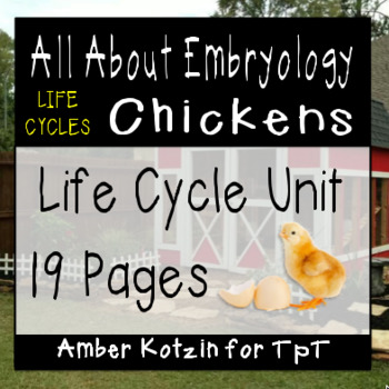Embryology: A Chicken's Life Cycle Packet