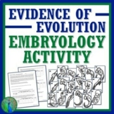 Evidence of Evolution Embryology Activity with Worksheet NGSS MS-LS4-2 MS-LS4-3
