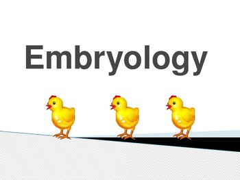 Embryology Vocabulary