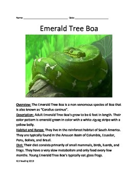 Emerald Tree Boa Snake - Informational Article Questions Vocabulary Facts