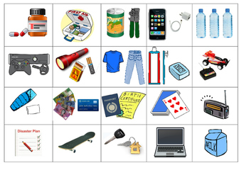 Emergency Kit Cut and Paste Activity