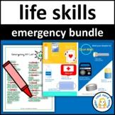 Emergency Kit Store Ad