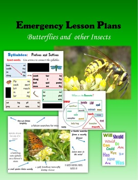 Emergency Lesson Plans:  Butterflies and other Insects
