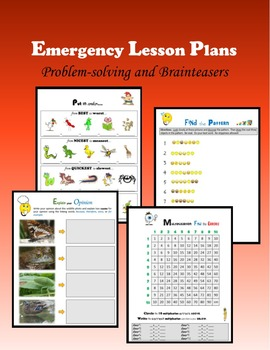 Emergency Lesson Plans:  Problem-solving and BrainTeasers