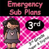 Emergency Sub Plans: 3rd Grade