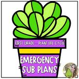 Emergency Sub Plans | Plant Life Cycle