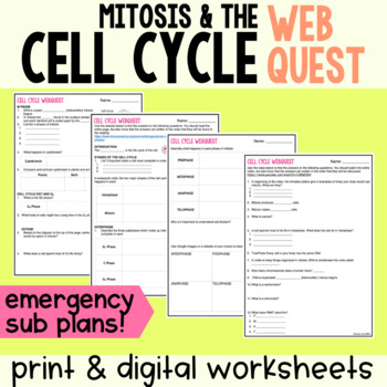 Emergency Sub Plans: Cell Cycle Webquest