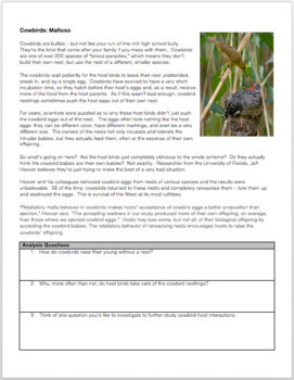 Emergency Sub Plans: Secret Lives of Animals Part 2 (Bullies)