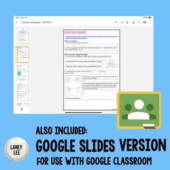 Emergency Sub Plans: Darwin, Natural Selection, & Evolution Webquest