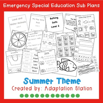 Emergency Sub Plans for Special Education Classrooms-Summer Theme