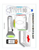 Emergency Survival Kit / Dystopian Literature Graphic Organizer
