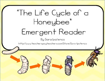 """Emergent Easy Reader Book: """"The Life Cycle of a Honeybee"""""""