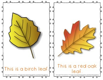 "Emergent Easy Reader Book: ""Fall Leaves"""