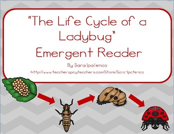 "Emergent Easy Reader Book: ""The Life Cycle of a Ladybug"""