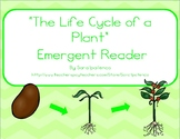 """Emergent Easy Reader Book: """"The Life Cycle of a Plant"""""""