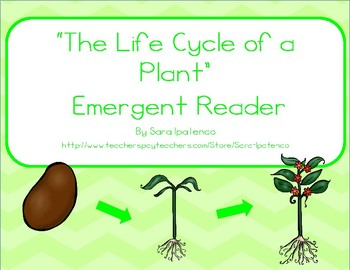 "Emergent Easy Reader Book: ""The Life Cycle of a Plant"""