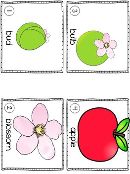 Emergent Reader & Activity: Apples Grow {The Cycle of an Apple}